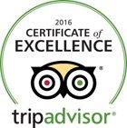 certificate-TripAdvisor